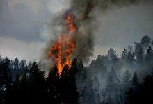Photo of На востоке Украины и Одесщине 26-27 октября сохранится чрезвычайная пожароопасность