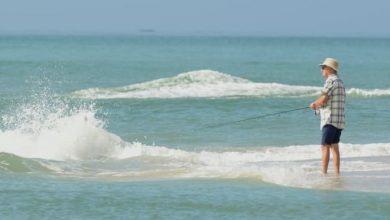 Photo of Из-за глобального потепления Восточное побережье США заполонили опасные бактерии