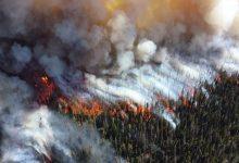 Photo of На востоке Украины 30-31 октября сохранится чрезвычайный уровень пожарной опасности