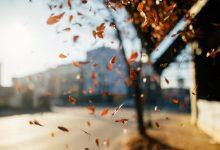 Photo of Аномально тепло: погода на 28 октября