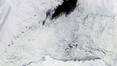 Photo of Теплые «воздушные реки» создают во льдах Антарктики полыньи размером со штат
