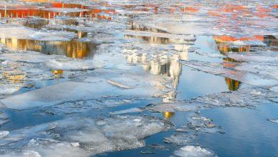 Photo of Жителей Украины просят не выходить на тонкий лед