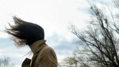 Photo of «Желтое» предупреждение: на западе Украины 24 ноября ожидается гололедица, туман и сильный ветер
