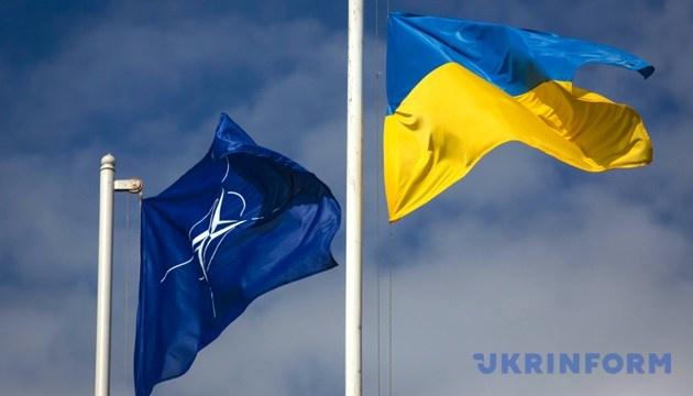 Пять стран НАТО провели переговоры по поддержке Украины - Пентагон